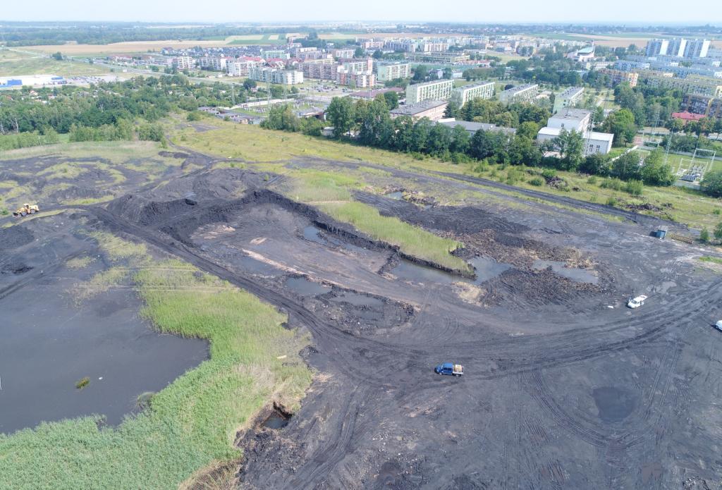 Inwentaryzacja osadników kopalni węgla kamiennego na Śląsku